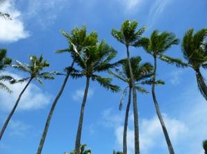 Hawaiian_sky_2